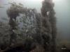 reef-framing