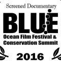 """Sunken Conservation"" at Blue Ocean Film Festival"