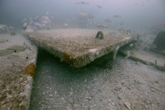 Double T Reef Structure