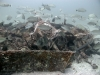 1-wreckage-pile