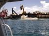 FF Jax Reef 2011