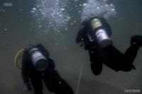 divers-reel-jpg