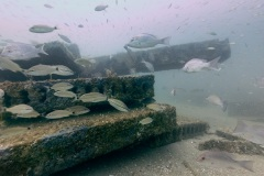 Concrete Artificial Reef Structures