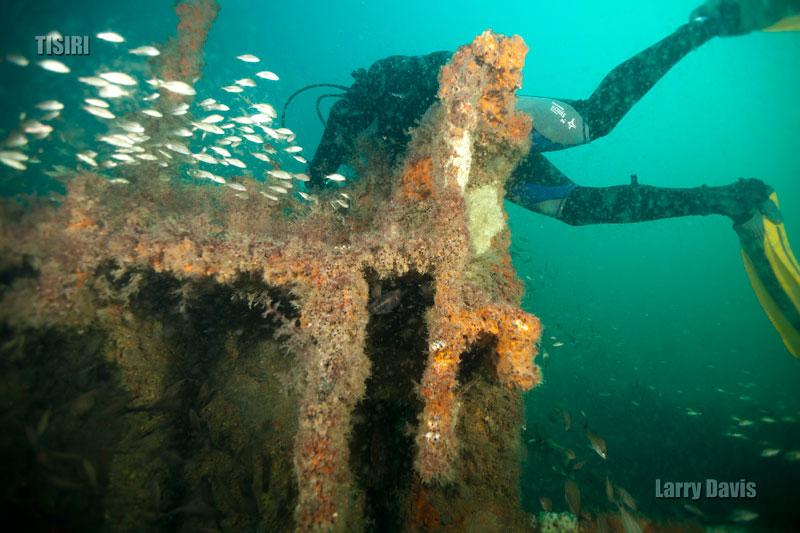 11-jacksonville-barge-reef