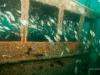 jacksonville-wreck-reef