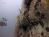 spike-reef-jacksonville