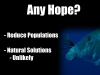 7 Any Lionfish Solutions