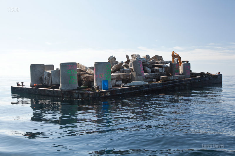 Reef Deployment