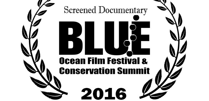 """Sunken Conservation"" at Blue Ocean Film Festival"