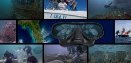 UWJAX Offshore Underwater Outreach Campaign