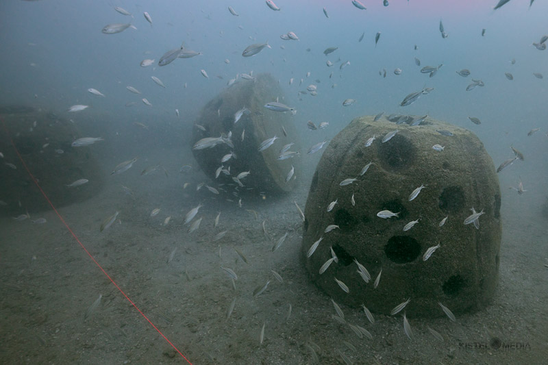 Reef Balls at JCL Reef