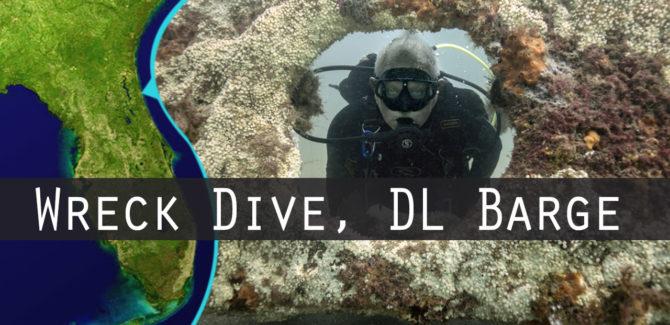 Eco-Diving St. Augustine Sunken Barge Reef