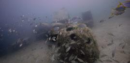Reef Blocks Have Landed, GPS Coordinates